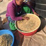 2019ネパール③『ネパールのスパイスを求めて』・・・ネパール食材の製造所へ